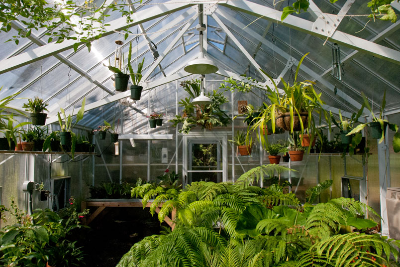 White Interior of a Cottage Greenhouse