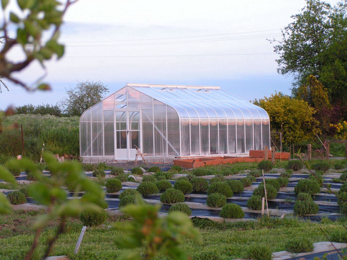 Feature 16x20 Curved Twinwall Greenhouse