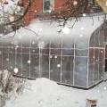 Winter Greenhouse